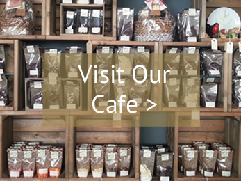 Come and Visit Our Cafe